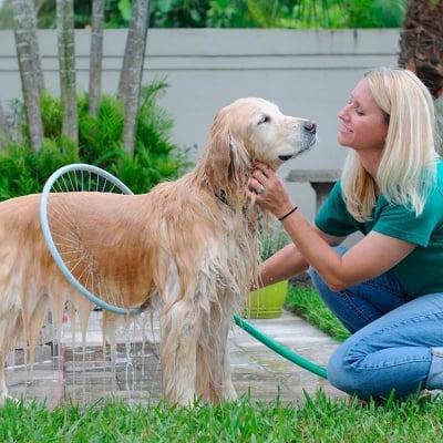 Обръч за къпане на куче
