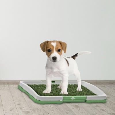 Кучешка тоалетна